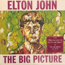 Elton John - The Big Pigture